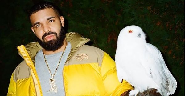 Stream Drake's New Project