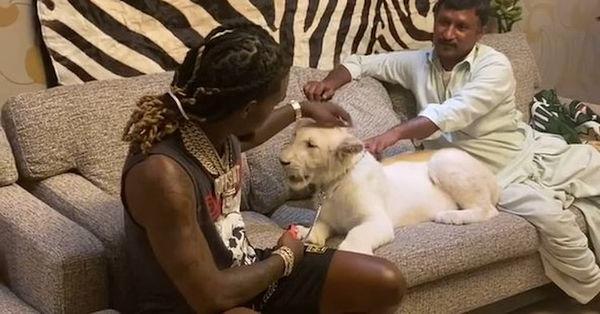 Offset Got Bit By A Lion