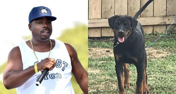 Daz Dillinger Says The Cops Shot & Killed His Dog